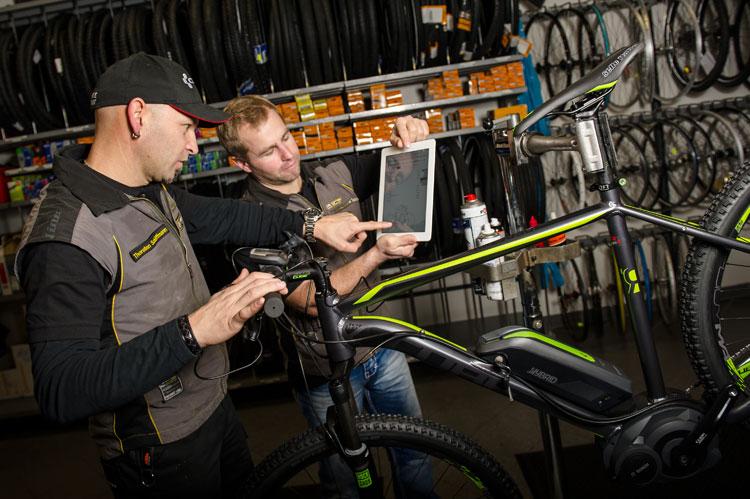 Fahrrad Service :: More der Spezialist